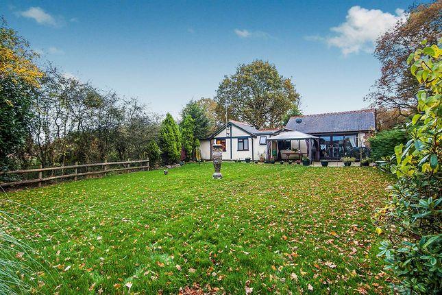 Thumbnail Detached bungalow for sale in Bennetts Avenue, Rettendon Common, Chelmsford