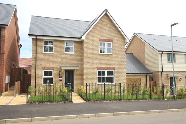 Thumbnail Detached house for sale in Biggleswade Road, Potton, Sandy