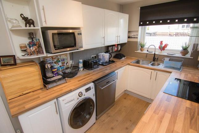 Thumbnail Semi-detached house to rent in The Links, Coleford