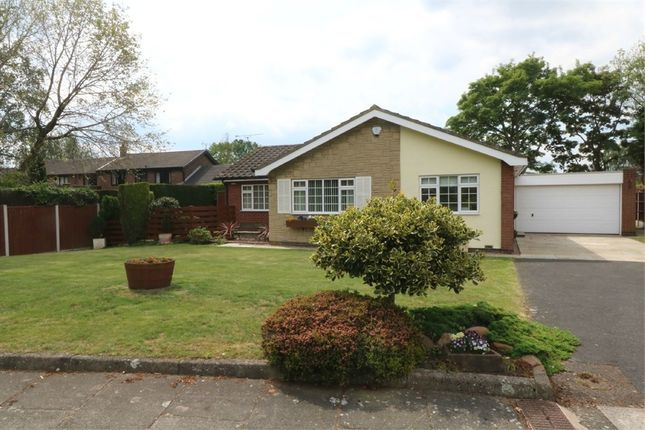 Thumbnail Detached bungalow for sale in The Hollows, Bessacarr, Doncaster, South Yorkshire