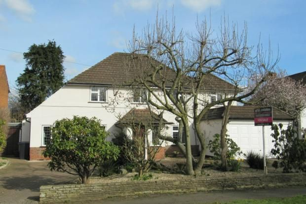 Thumbnail Bungalow to rent in Somerset Waye, Iver