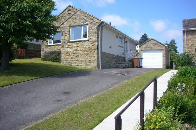 Thumbnail Bungalow to rent in Park Wood Crescent, Skipton