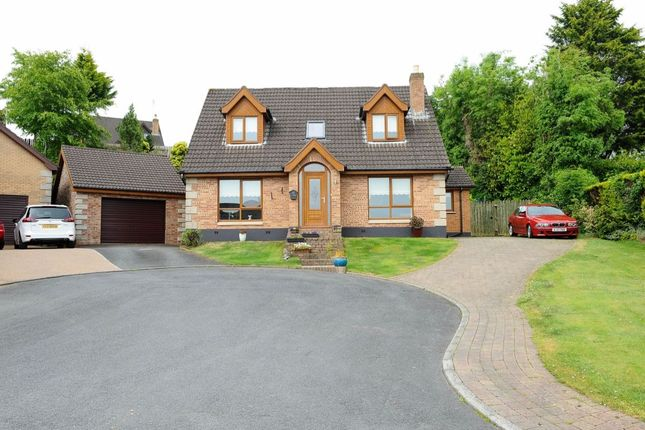 Thumbnail Detached house for sale in Fort Hill Close, Dundonald, Belfast