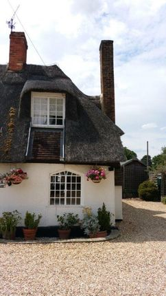 Thumbnail Cottage to rent in Northill Road, Ickwell