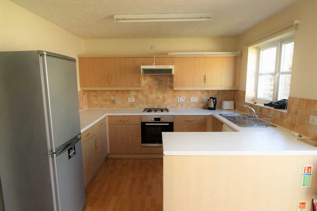Thumbnail Semi-detached house to rent in Greenbank Terrace, Plymouth