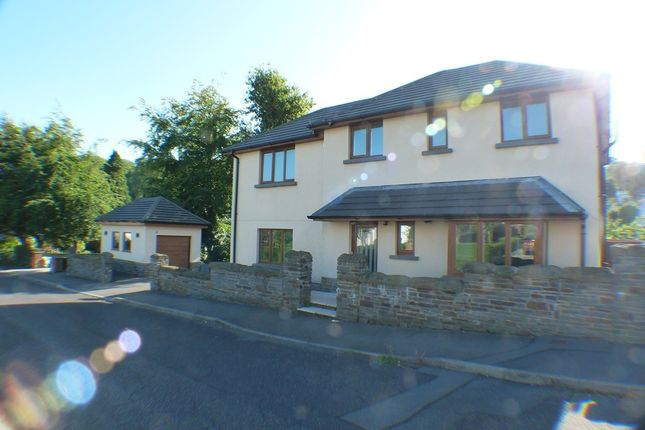 Thumbnail Detached house to rent in Bude Haven Terrace, Swansea
