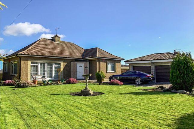 Thumbnail Detached bungalow for sale in Muirhead, Freuchie, Cupar