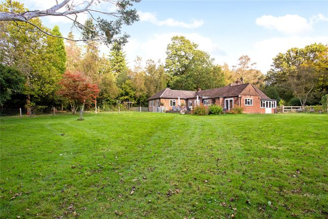 Thumbnail Bungalow for sale in Broad Lane, Newdigate, Dorking, Surrey