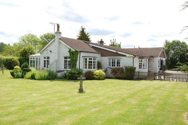 Thumbnail Detached bungalow for sale in Fen Lane, Orsett, Grays