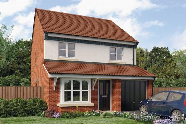 "Thumbnail Detached house for sale in ""Hallam"" at Croston Road, Farington Moss, Leyland"