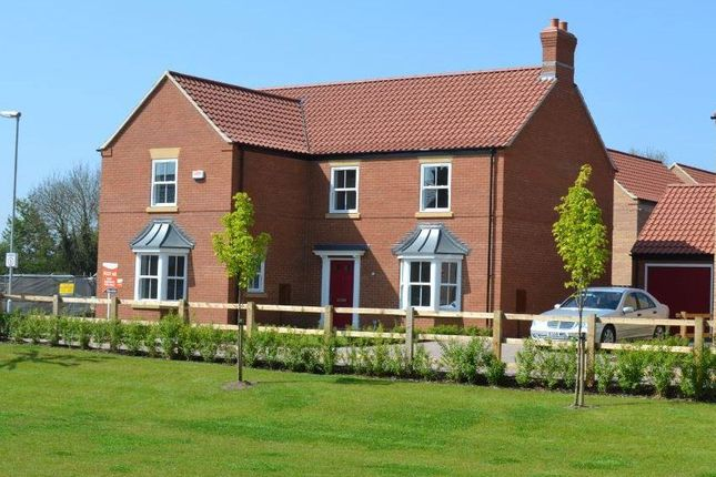 Thumbnail Detached house for sale in The Warwick, Willoughby Road, Alford, Lincolnshire