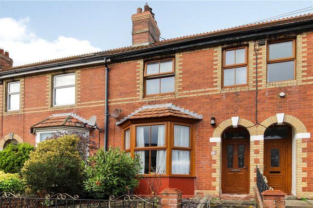 Terraced house to rent in Hillhead Terrace, Musbury Road, Axminster, Devon
