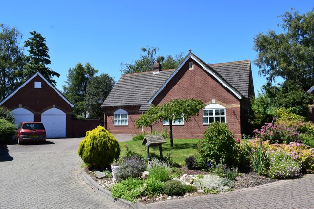 Thumbnail Bungalow for sale in Winfrey Close, Long Sutton