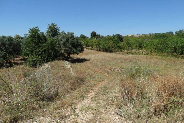 Land for sale in Olhão, Olhão, Portugal