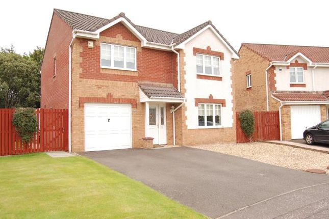 Thumbnail Detached house to rent in Allan Grove, Bellshill
