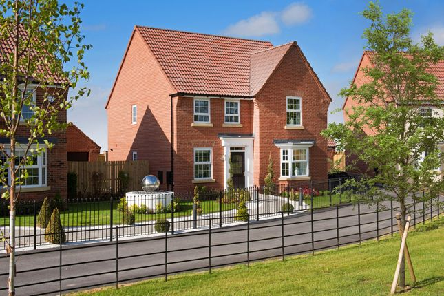 """Thumbnail Detached house for sale in """"Holden"""" at Tranby Park, Jenny Brough Lane, Hessle"""