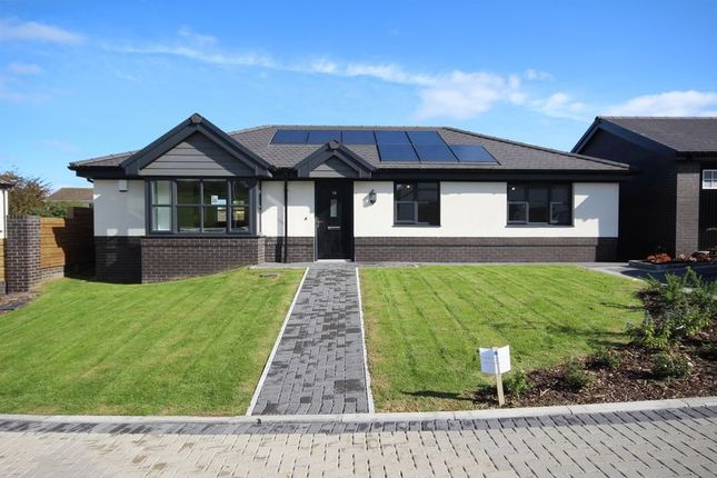 Thumbnail Detached bungalow for sale in The Holly, Oakwood Development, Conwy