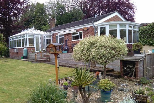 Thumbnail Detached bungalow for sale in Bourne Gardens, Porton, Salisbury