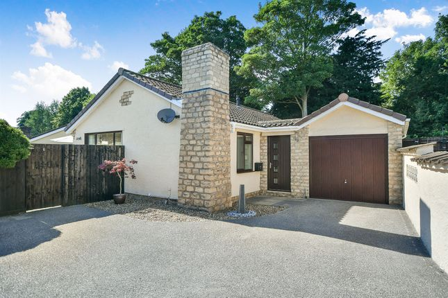 Thumbnail Detached bungalow for sale in Yew Tree Close, Calne