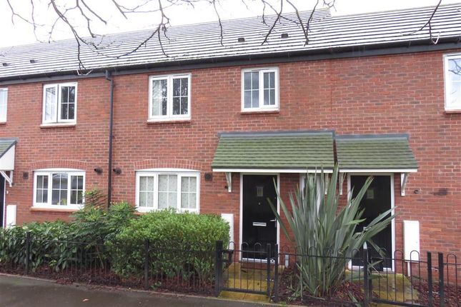 Thumbnail Property to rent in Shielding Way, Stafford
