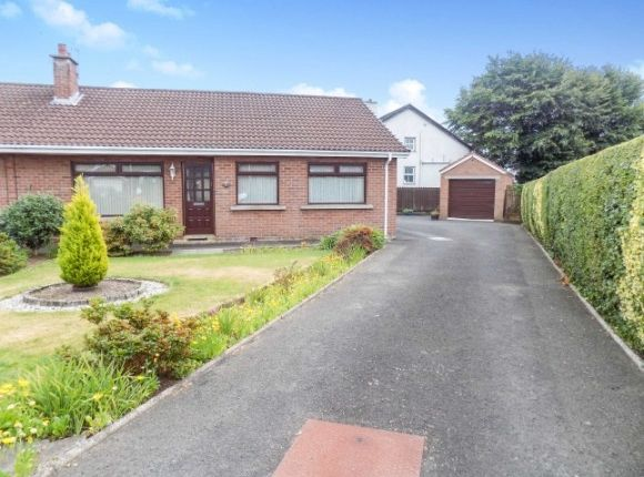 Thumbnail Semi-detached bungalow to rent in Orange Hall Lane, Lisburn