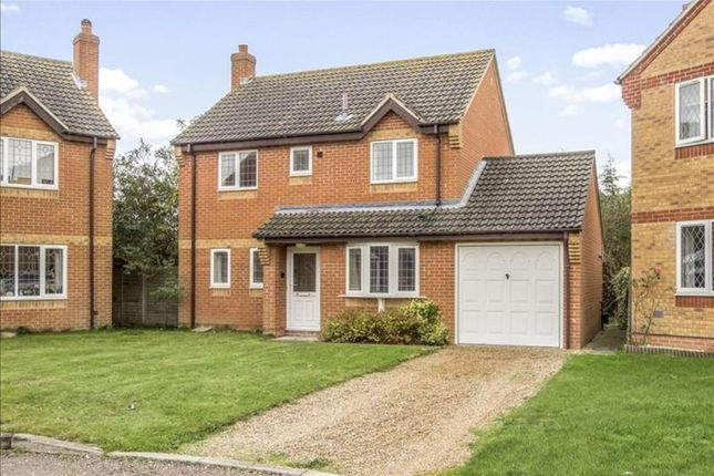 Thumbnail Detached house for sale in Buttercup Way, Norwich