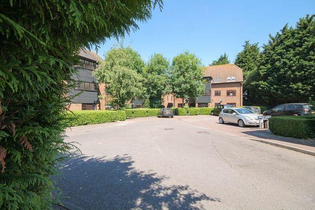 Thumbnail Flat for sale in Spruce Close, Laindon, Basildon