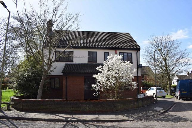 Thumbnail Detached house to rent in Gifford Place, Brentwood CM14, Essex,