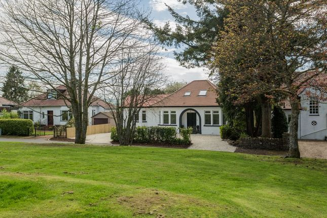 Thumbnail Detached house for sale in Broomlea, Pacemuir Road, Kilmacolm