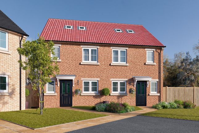 "Thumbnail Semi-detached house for sale in ""The Newstead"" at St. Thomas's Way, Green Hammerton, York"