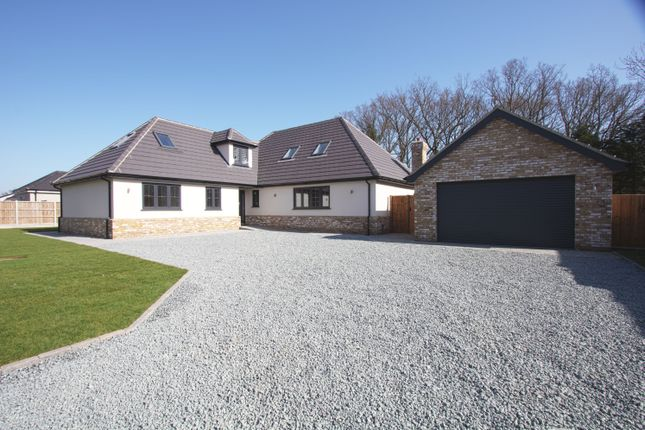 Thumbnail Detached house for sale in The Mulberries, Noak Hill Road, Billericay, Essex