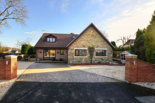 Thumbnail Detached house for sale in Springwood, Swarland, Morpeth