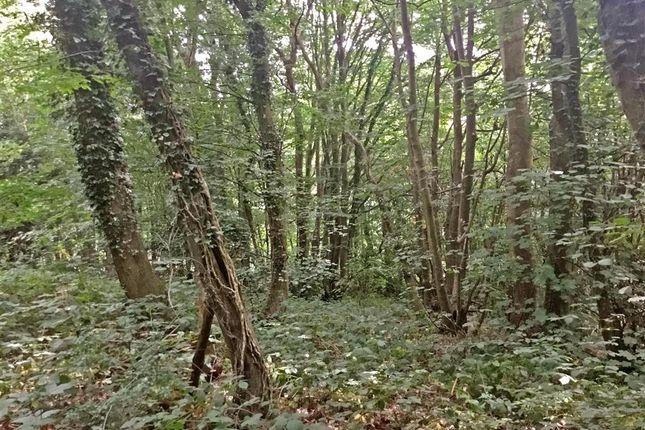 External of Willow Walk, Culverstone, Meopham, Kent DA13