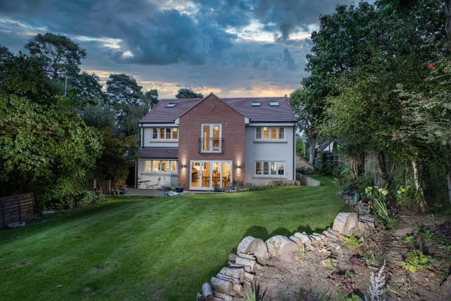 Thumbnail Detached house for sale in Lytton Road, Woking