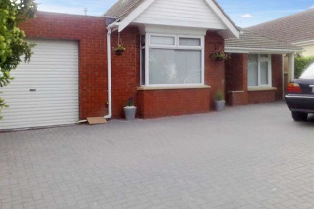 Thumbnail Detached bungalow to rent in Drove Road, Swindon, Wiltshire
