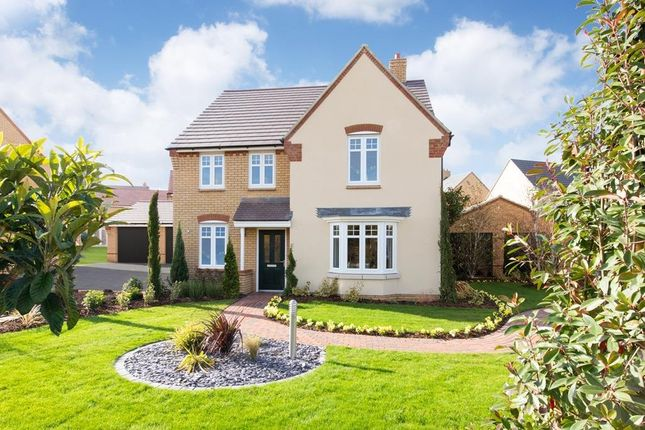 "Thumbnail Detached house for sale in ""Holden"" at Southern Cross, Wixams, Bedford"
