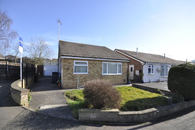 Thumbnail Detached bungalow to rent in Roydon Close, Mickleover, Derby