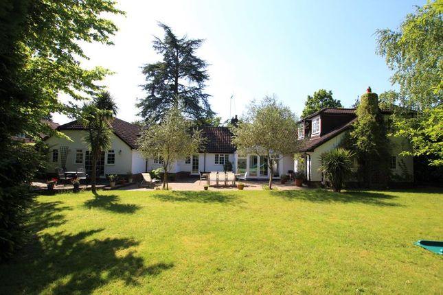 Thumbnail Detached house to rent in Bracken Close, Woking
