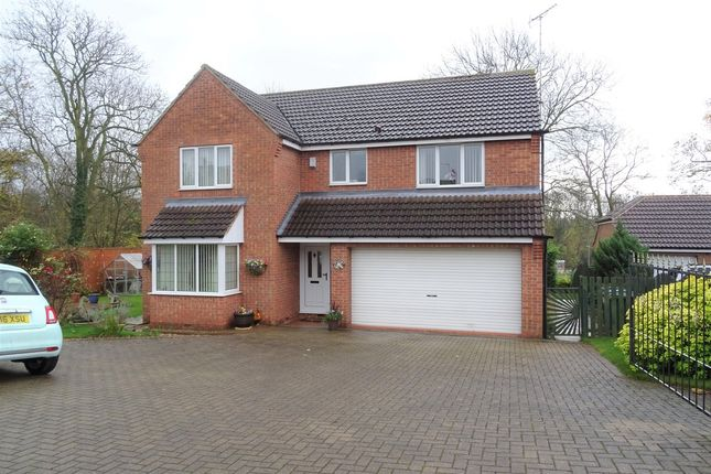 Thumbnail Detached house for sale in Church Street, Langold, Worksop