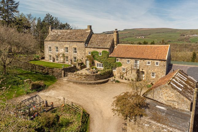 Thumbnail Farm for sale in Coves House, Wolsingham, County Durham