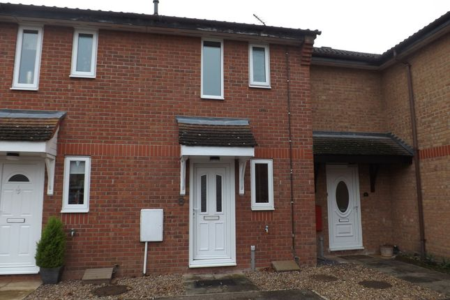 Thumbnail Terraced house to rent in Columbine Close, Thetford