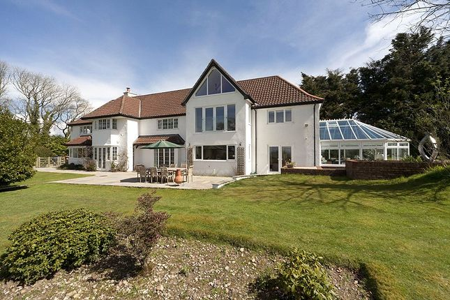 Thumbnail Detached house for sale in Whimple, Exeter, Devon