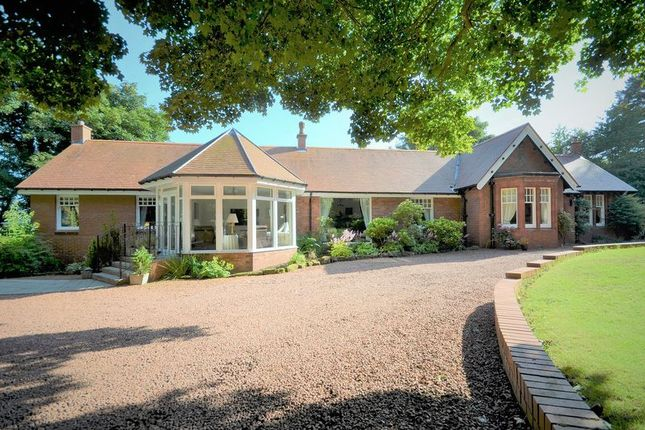 Thumbnail Detached bungalow for sale in The Shieling, Southwood, Troon