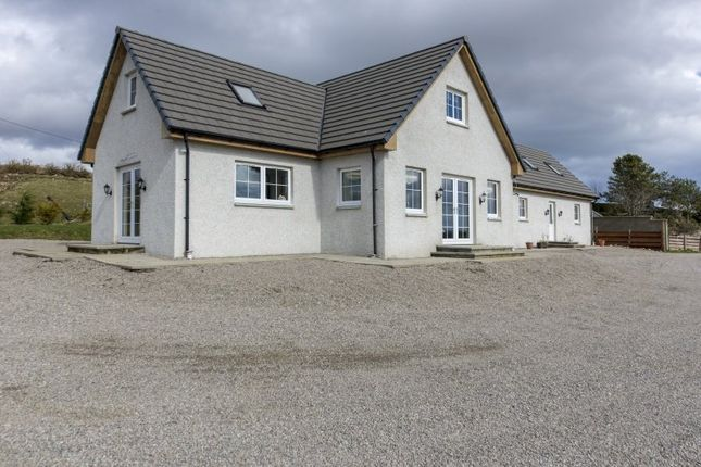Thumbnail Property for sale in 198 Lednabirichen, Dornoch, Dornoch, Highland