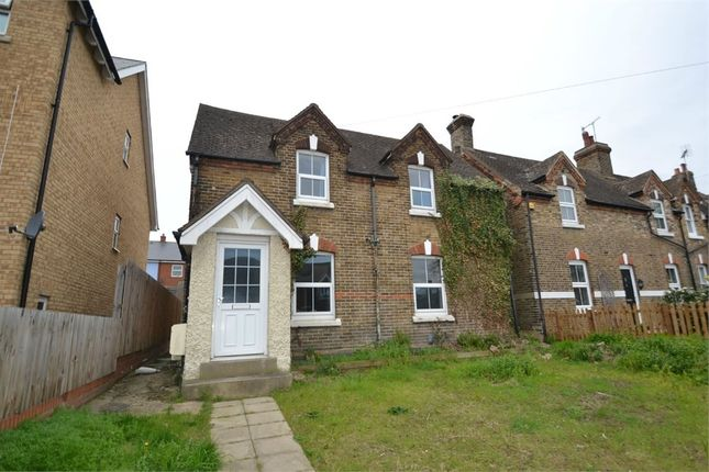 Thumbnail Detached house to rent in Standard Road, Colchester