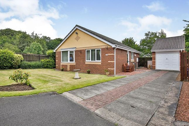 Thumbnail Bungalow for sale in Graythwaite, Chester Le Street