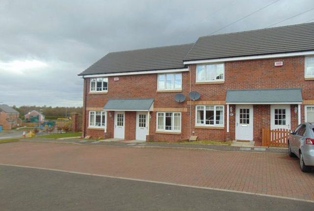 Thumbnail Terraced house to rent in Wilkie Drive, Holytown, Motherwell