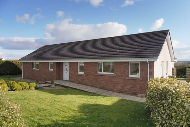 Thumbnail Detached bungalow for sale in Keswick Place, Annan