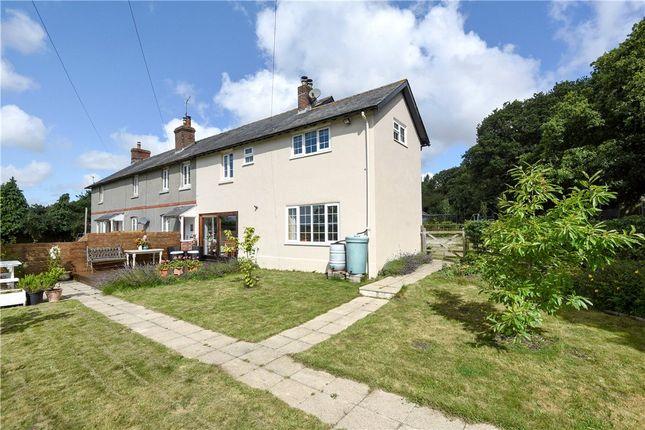 Thumbnail End terrace house for sale in Heath Cottages, Bockhampton, Dorchester