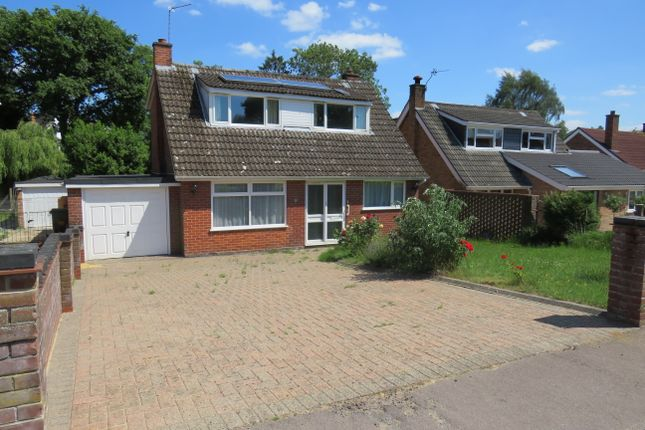 Thumbnail Detached house to rent in Rosebery Avenue, Poringland, Norwich